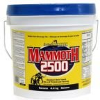 InterACTIVE Nutrition Mammoth 2500 4,4 кг.
